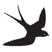 bird_1_200px