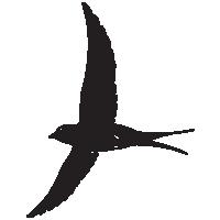 bird_2_200px