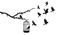 birds_shutterstock_110502425